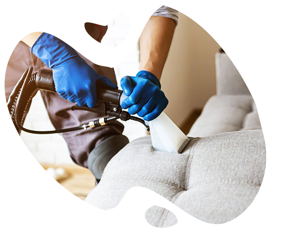 Професионално почистване и пране на тапицерия